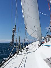 Una foto del Grampus durante la nostra navigazione